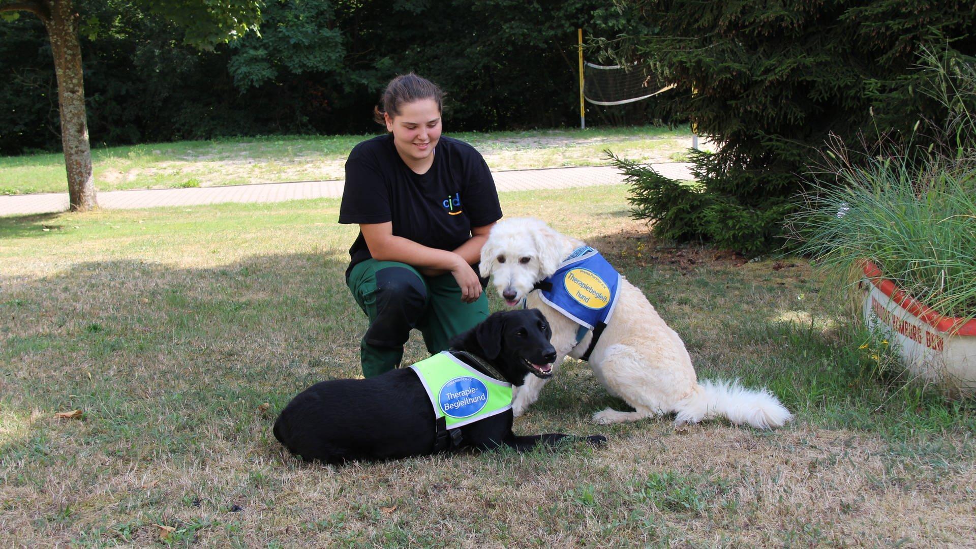 Der Hund Als Motivationscoach Projekte Herzenssache Swr